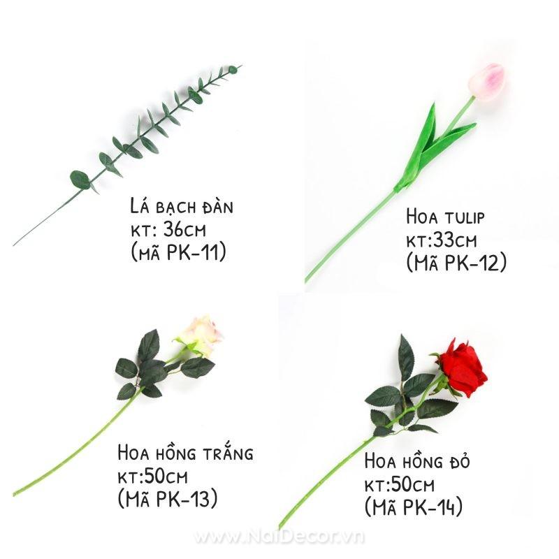 danh sach hoa la gia chup anh 03