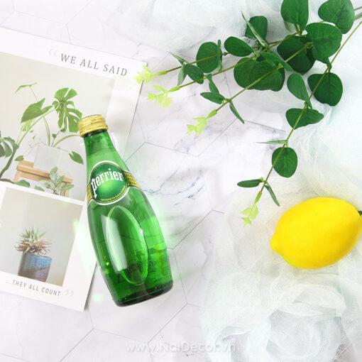 Hoa lá giả chụp ảnh - Lá bạch đàn