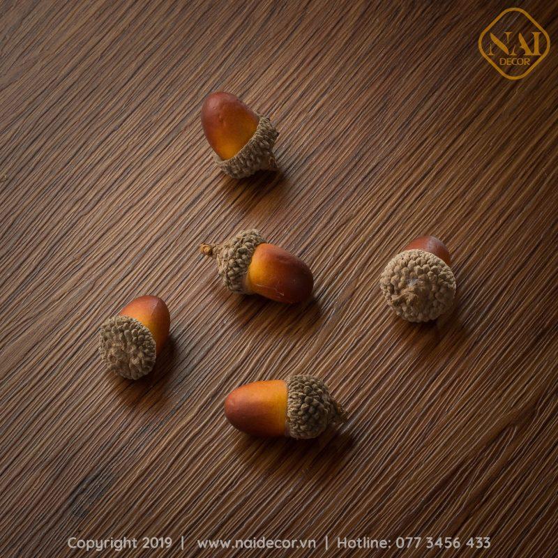 hạt sồi phụ kiện chụp ảnh food