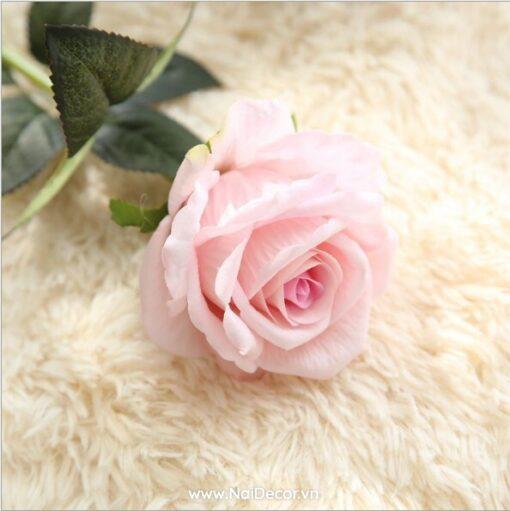 hoa hong trang tri mo phong 1