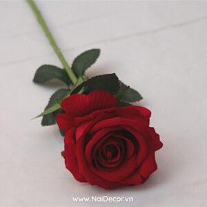 hoa hong trang tri mo phong 2