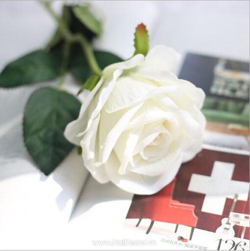 hoa hong trang tri mo phong 3