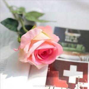 hoa hong trang tri mo phong 4