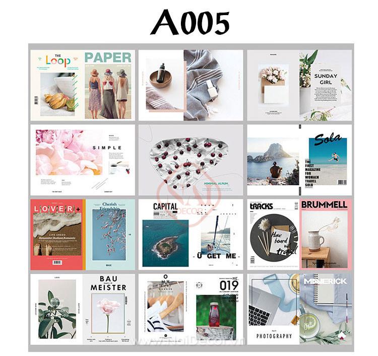 set tc a005