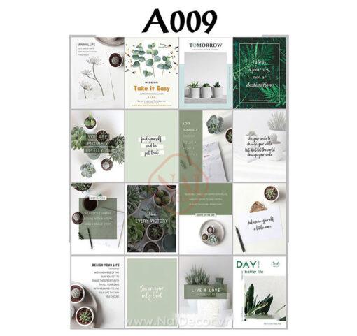 set tc a009
