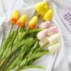 hoa tulip trang tri phu kien chup anh nhieu mau 1