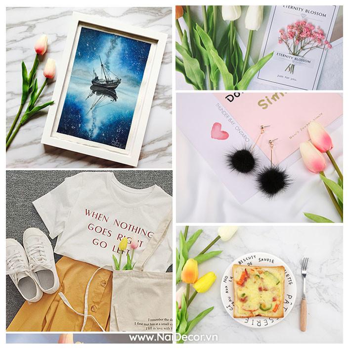 hoa tulip trang tri phu kien chup anh nhieu mau 7