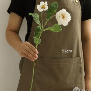 Hoa Lan Tuong Mo Phong S1