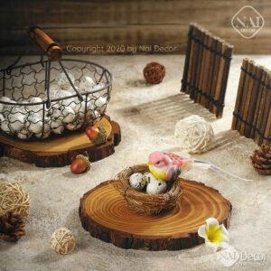 Chim Trung Mo Phong Chup Anh (2)