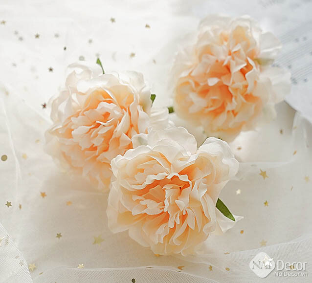 Hoa Mau Don Gia Trang Tri Mo Phong C5